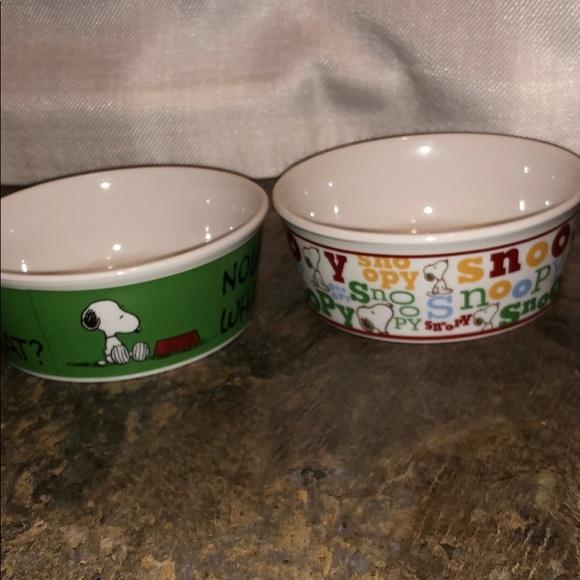 Peanuts/ snoopy pet bowls